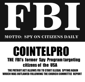 Image result for cointelpro snitch militia